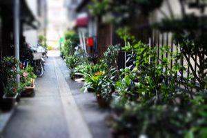 018_私の住んでいる下町~路地のある風景~