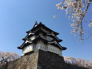 053_弘前城と桜